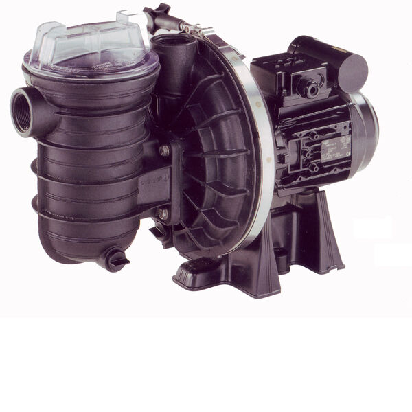 Sta-Rite 5P2R Swimming pool Pump